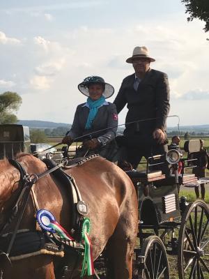 Nicole Bitting Vize-NRW Meisterin bei den Zweispänner Pferden